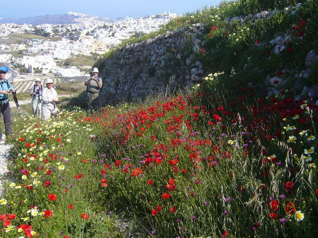 Wandergruppe genießt die Natur und die blühenden Blumen