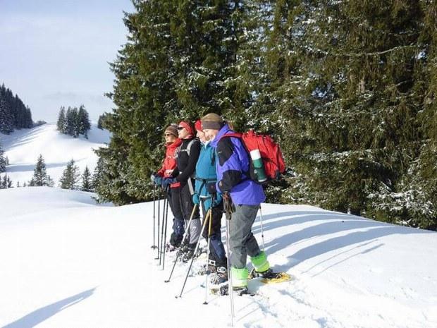 Skigruppe in den Bergen
