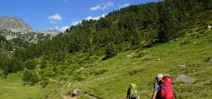 Zwei Wanderer gehen durch die grüne Berglandschaft