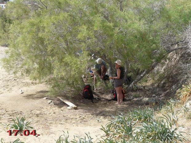 Unter Bäumen machen die Wanderer eine Pause