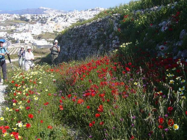 Wandergruppe genießt die schöne Natur und die blühenden Blumen